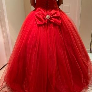 Dresses & Skirts - Quinceañera Dress (NEW/never used)